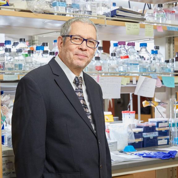 Photo of Yaacov Barak, PhD