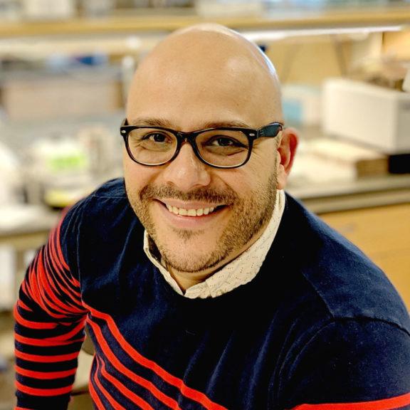 Photo of Miguel Brieño-Enríquez, MD, PhD