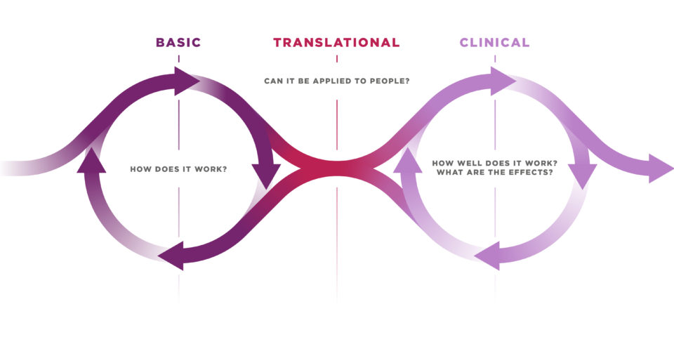 Diagram that describes how clinical trials are decided.