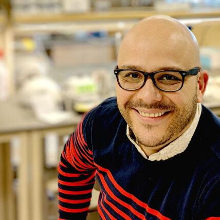 Could COVID-19 Impact Male Fertility? MWRI Researcher is Investigating